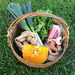 Produit légumes Amapetite terre